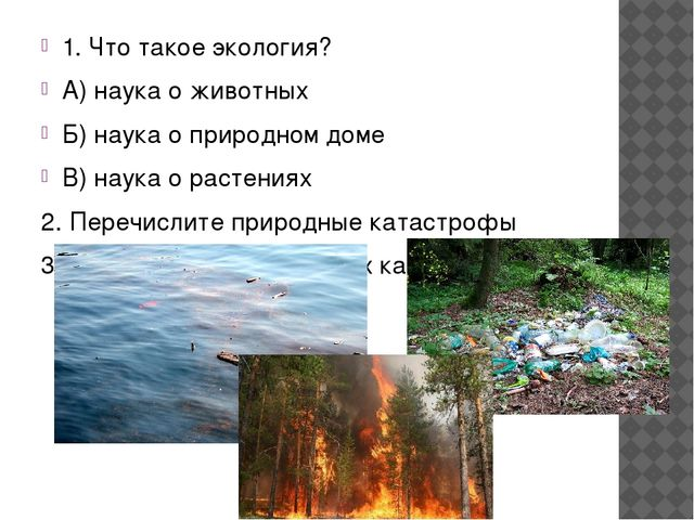 Выберите положительное влияние человека на природу 1.Сажать деревья 2.Рват...