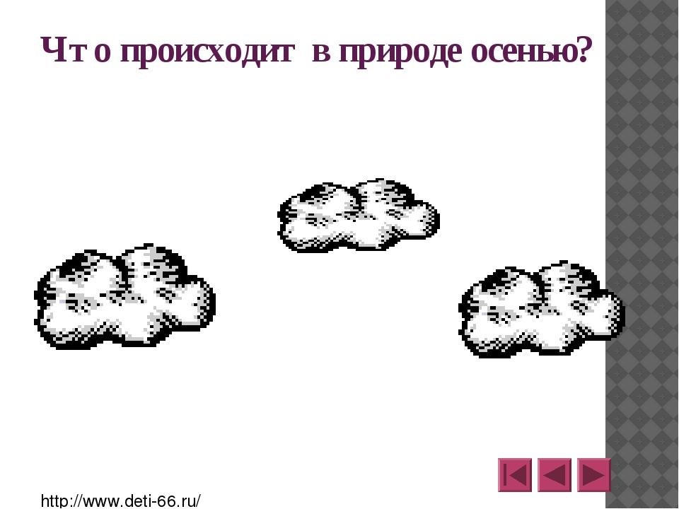 http://www.o-detstve.ru Портал «О детстве» III Всероссийский дистанционный к...