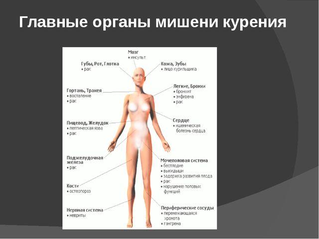 Главные органы мишени курения