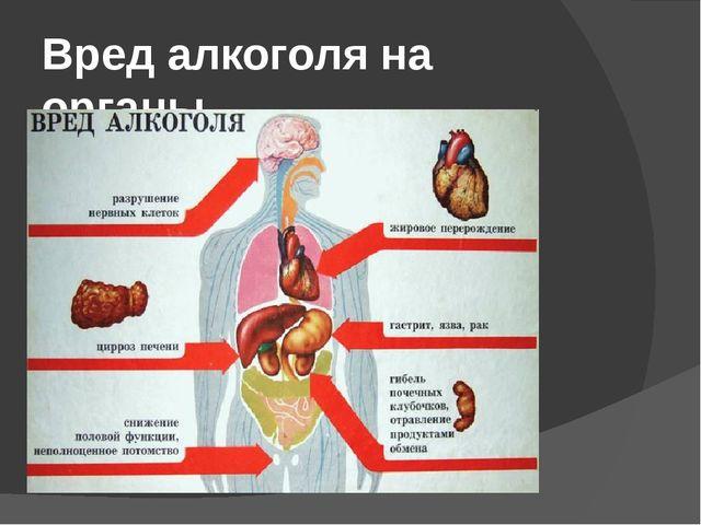 Вред алкоголя на органы