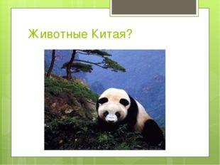Животные Китая?