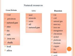 Natural resources Coal petroleum natural gas zinc tin salt iron ore chalk lea