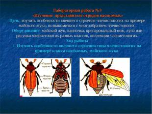 Лабораторная работа №3 «Изучение представителе отрядов насекомых» Цель: изучи