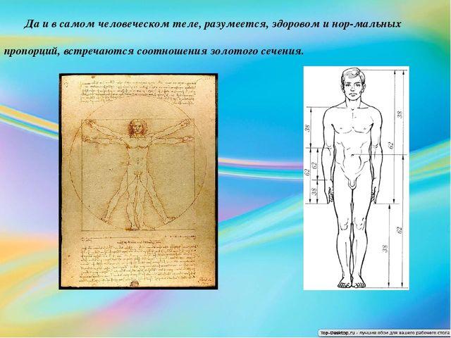 Да и в самом человеческом теле, разумеется, здоровом и нор-мальных пропорций...