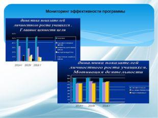 2014 г 2015г 2016 г 2014 г 2015г 2016 г Мониторинг эффективности программы
