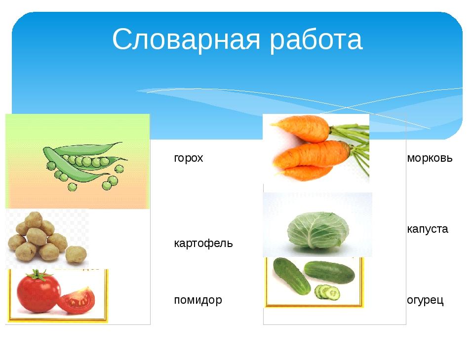 Словарная работа горох картофель помидор морковь капуста огурец