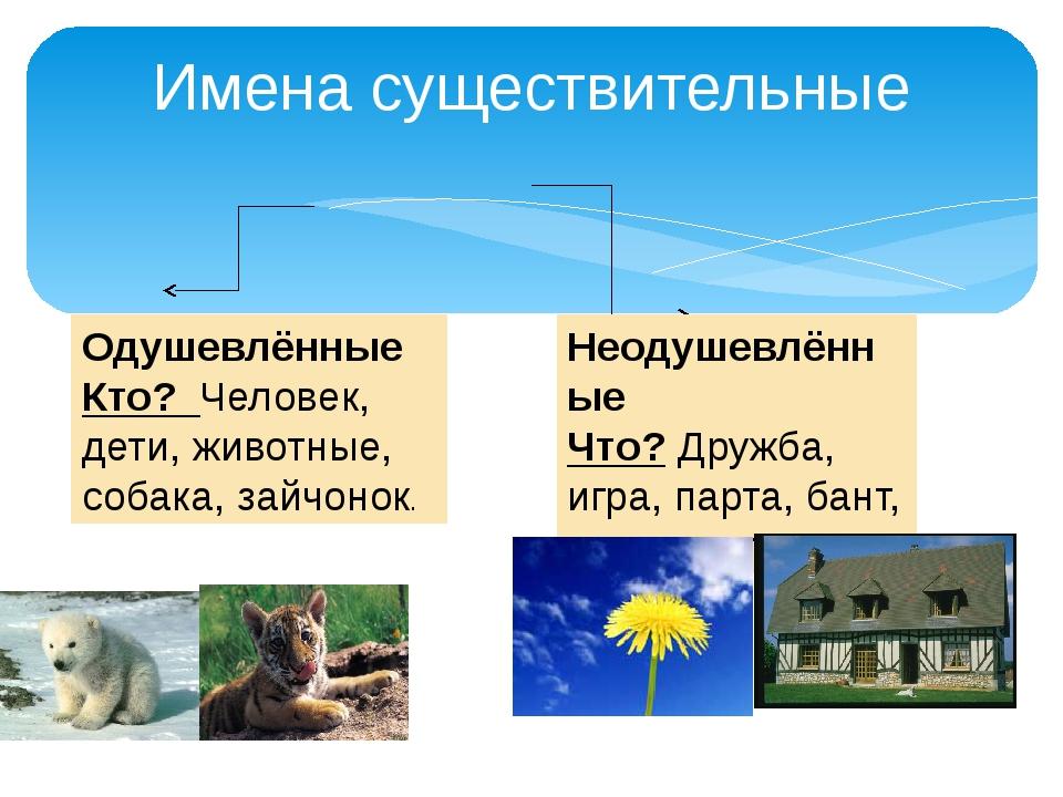 Имена существительные Одушевлённые Кто? Человек, дети, животные, собака, зайч...