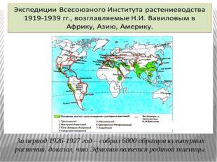 За период 1926-1927 год – собрал 6000 образцов культурных растений, доказал,