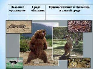 Названия организмовСреда обитанияПриспособления к обитанию в данной среде