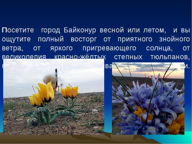 Посетите город Байконур весной или летом, и вы ощутите полный восторг от прия...
