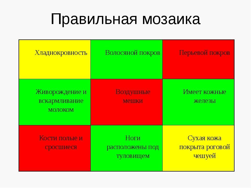 Правильная мозаика Хладнокровность Волосянойпокров Перьевойпокров Живорождени...