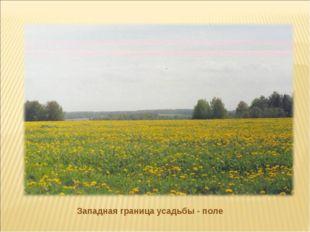 Западная граница усадьбы - поле