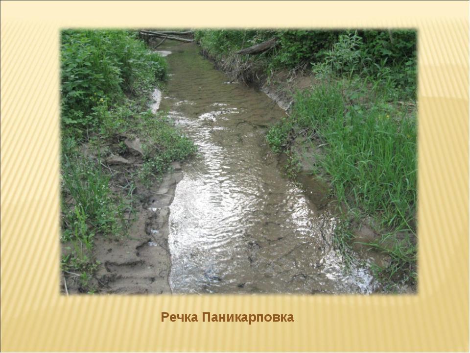 Речка Паникарповка