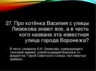 27. Про котёнка Василия с улицы Лизюкова знают все, а в честь кого названа эт