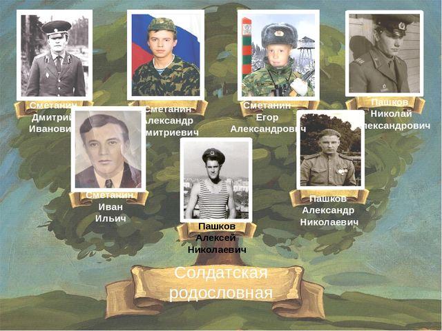 Пашков Алексей Николаевич Сметанин Дмитрий Иванович Сметанин Егор Александров...