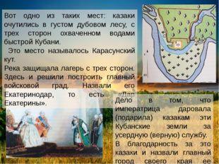 Вот одно из таких мест: казаки очутились в густом дубовом лесу, с трех сторон
