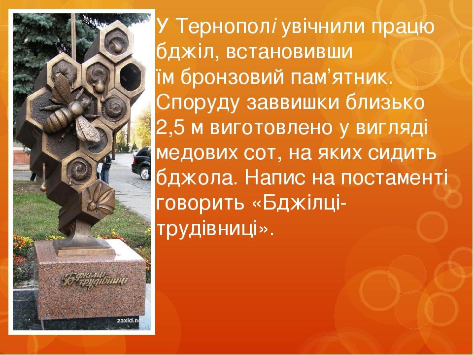 У Тернополі увічнили працю бджіл, встановивши їмбронзовий пам'ятник. Споруду...
