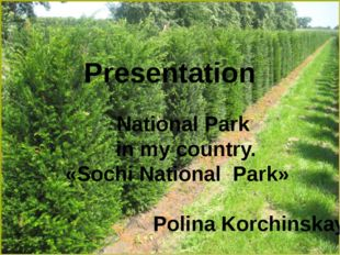Presentаtion National Park in my country. «Sochi National Park» Polinа Korchi