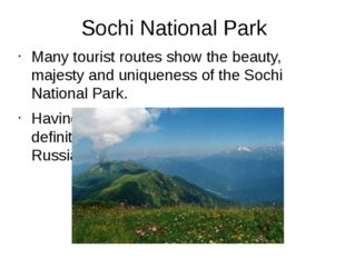 Sochi National Park Many tourist routes show the beauty, majesty and uniquene