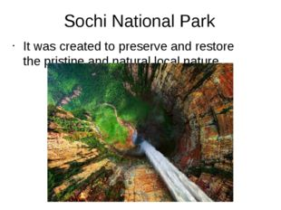 Sochi National Park It was created to preserve and restore the pristine and n