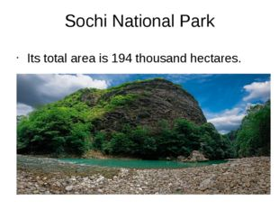 Sochi National Park Its total area is 194 thousand hectares.