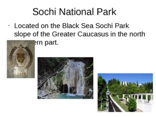 Sochi National Park Located on the Black Sea Sochi Park slope of the Greater