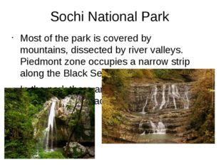 Sochi National Park Most of the park is covered by mountains, dissected by ri
