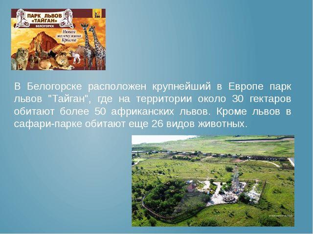 """В Белогорске расположен крупнейший в Европе парк львов """"Тайган"""", где на терр..."""