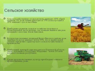 Сельское хозяйство Сельскохозяйственные угодья региона занимают 40% общей пло