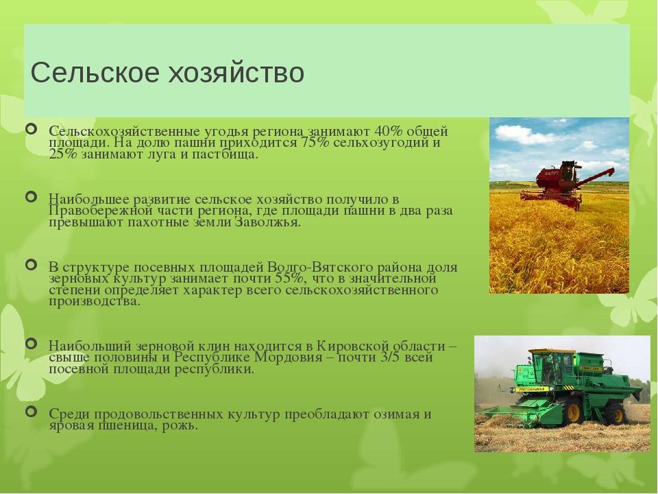 Сельское хозяйство Сельскохозяйственные угодья региона занимают 40% общей пло...