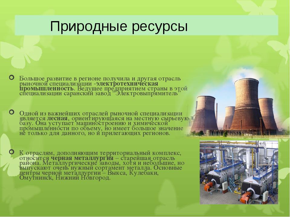 Большое развитие в регионе получила и другая отрасль рыночной специализации -...