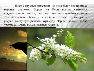 Поэт с грустью отмечает: «В окна бьют без промаха вороны крылом». Ворон на Р
