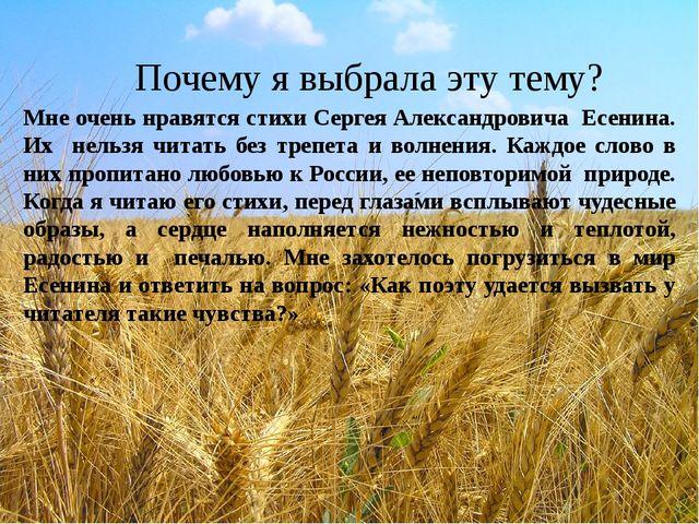 Почему я выбрала эту тему? Мне очень нравятся стихи Сергея Александровича Ес...