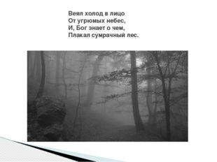 Веял холод в лицо От угрюмых небес, И, Бог знает о чем, Плакал сумрачный лес.