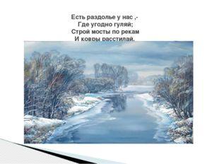 Есть раздолье у нас ,- Где угодно гуляй; Строй мосты по рекам И ковры расстил