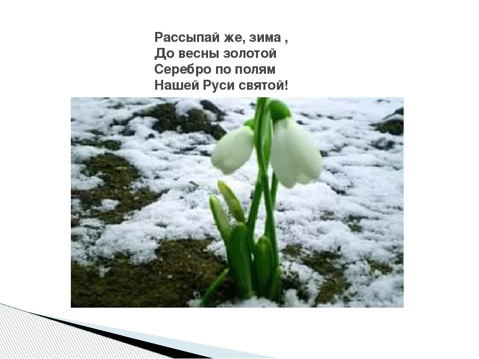 и с никитин весна для