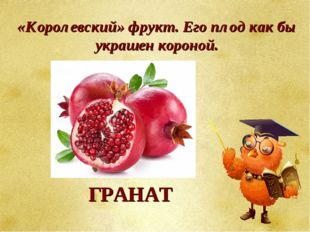 «Королевский» фрукт. Его плод как бы украшен короной. ГРАНАТ