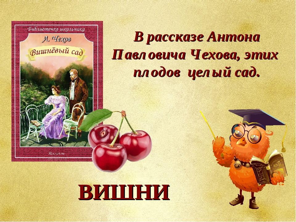 В рассказе Антона Павловича Чехова, этих плодов целый сад.  ВИШНИ