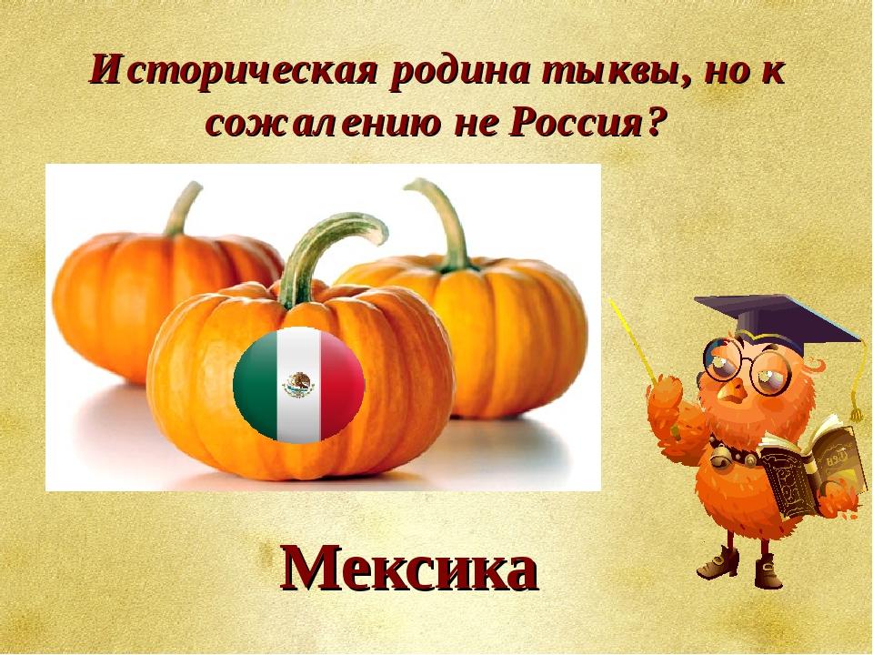 Историческая родина тыквы, но к сожалению не Россия? Мексика