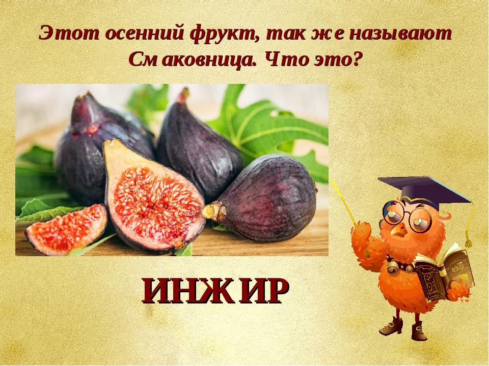 Этот осенний фрукт, так же называют Смаковница. Что это? ИНЖИР