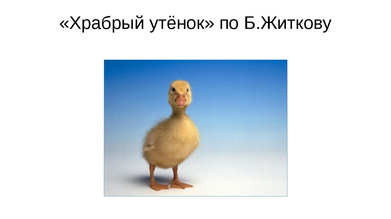 «Храбрый утёнок» по Б.Житкову