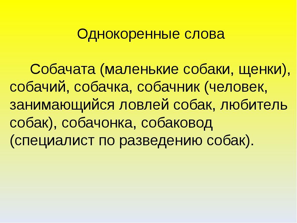 Однокоренные слова Собачата (маленькие собаки, щенки), собачий, собачка, соба...