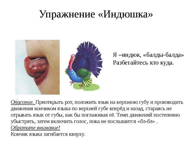 Упражнение «Индюшка» Описание. Приоткрыть рот, положить язык на верхнюю губу...