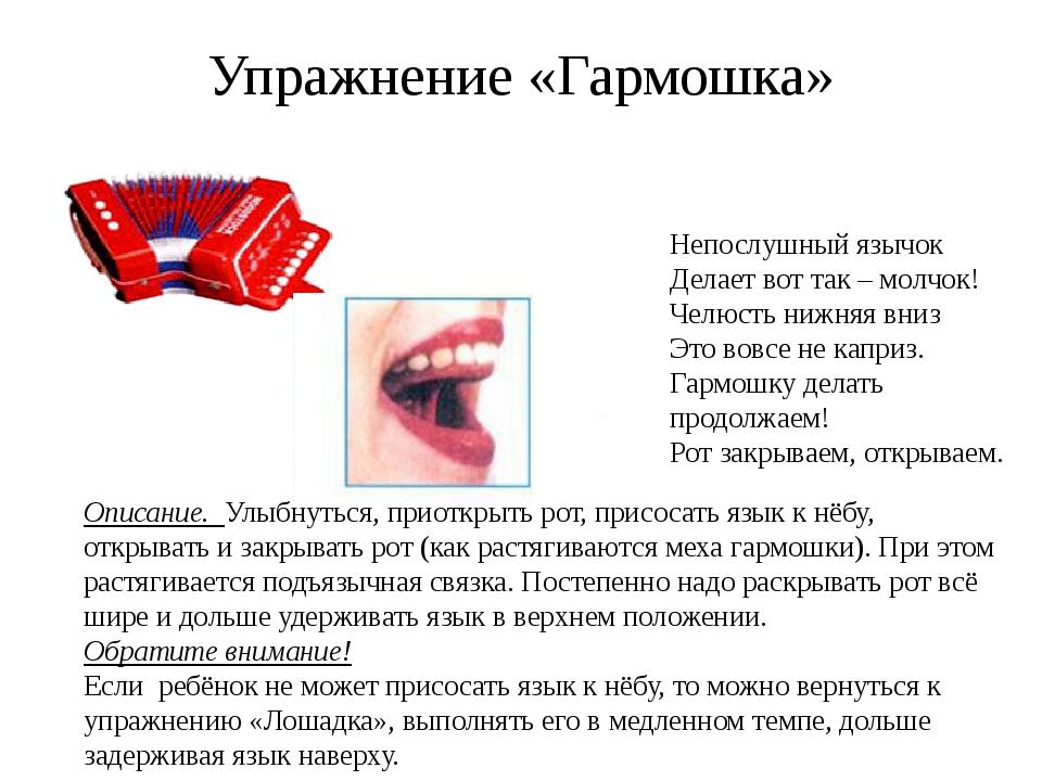 Упражнение «Гармошка» Описание. Улыбнуться, приоткрыть рот, присосать язык к...