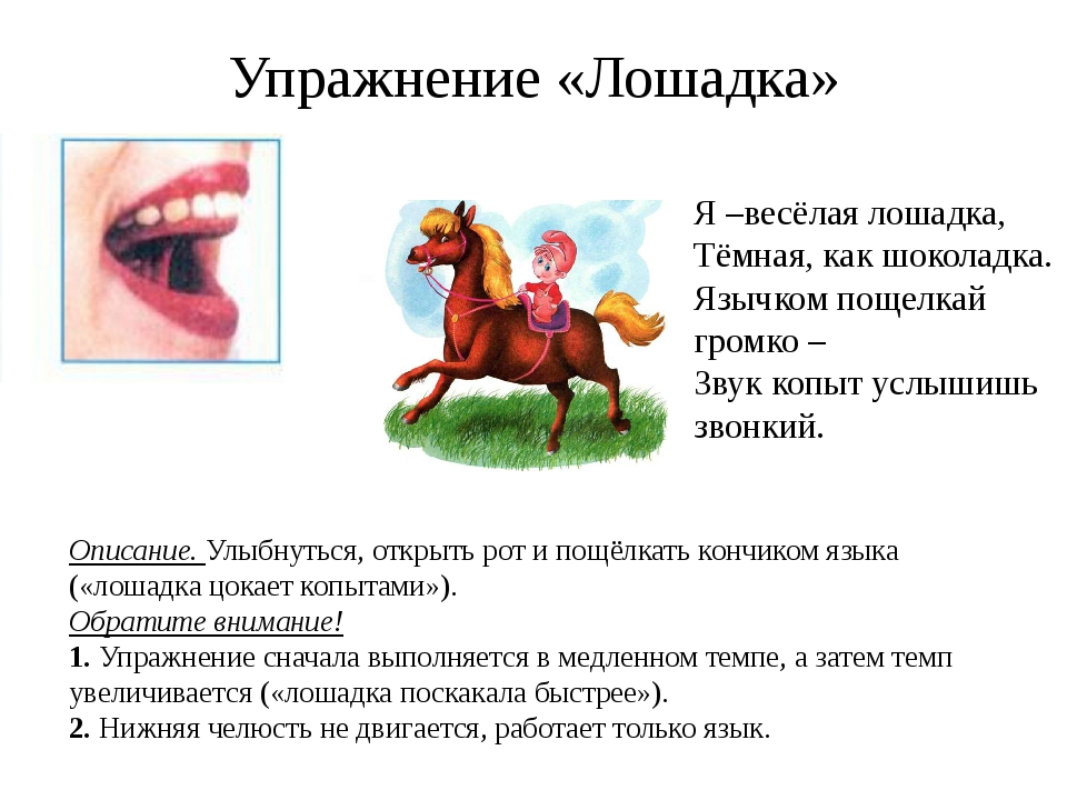 Упражнение «Лошадка» Описание. Улыбнуться, открыть рот и пощёлкать кончиком я...