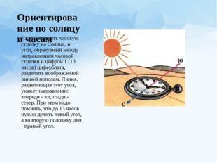 Ориентирование по солнцу и часам Надо направить часовую стрелку на Солнце, и