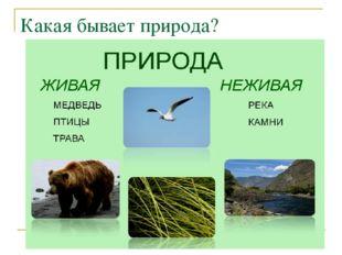 Какая бывает природа?