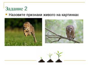 Задание 2 Назовите признаки живого на картинках