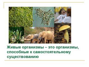 Живые организмы – это организмы, способные к самостоятельному существованию