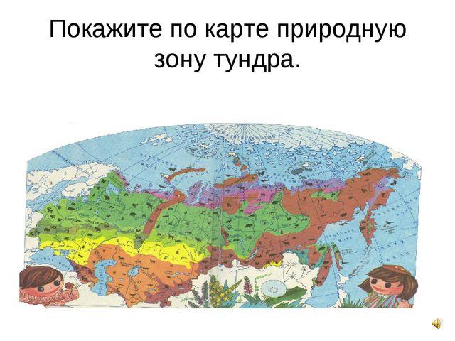 Покажите по карте природную зону тундра.